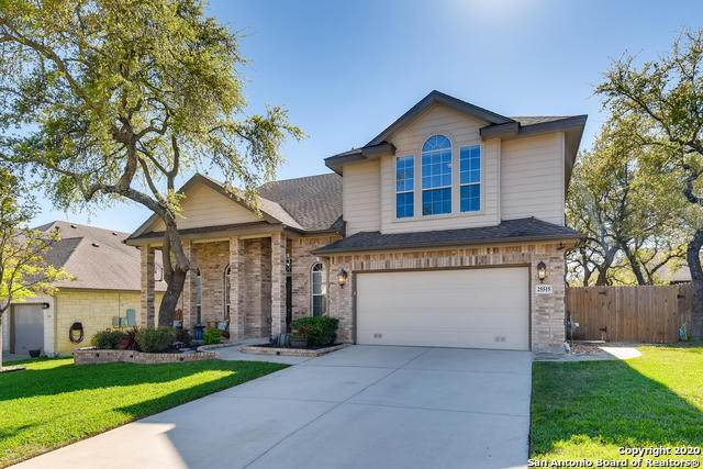 25515 Wounded Knee, San Antonio, TX 78261 (MLS #1449050) :: Vivid Realty