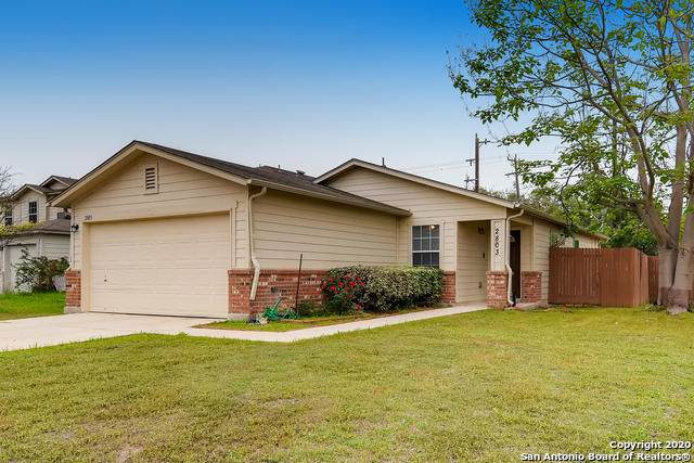 2803 Butterfly Peak, San Antonio, TX 78245 (MLS #1449053) :: Vivid Realty