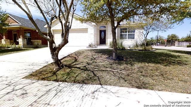 8203 Wayside Crk, San Antonio, TX 78255 (MLS #1449301) :: Vivid Realty