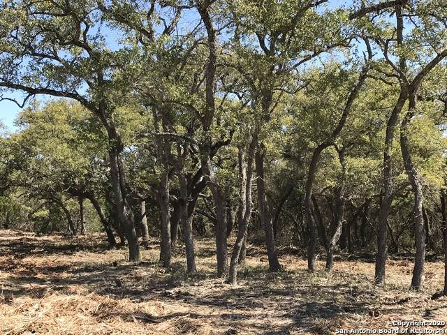 LOT 15 Canyon Creek Preserve Phase 4 Block C, Helotes, TX 78023 (MLS #1449568) :: Alexis Weigand Real Estate Group