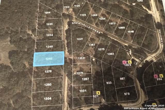 1262 Deer Valley Pass, Spring Branch, TX 78070 (MLS #1449589) :: McDougal Realtors