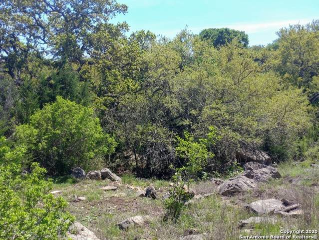130 Ramrod, Spring Branch, TX 78070 (MLS #1449643) :: McDougal Realtors