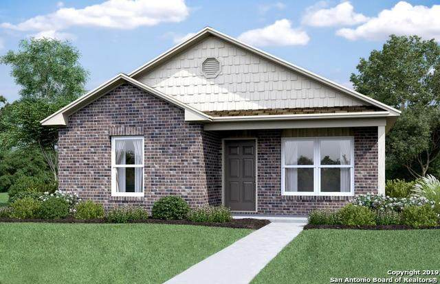 8127 Apex View, Converse, TX 78244 (MLS #1449795) :: The Lopez Group
