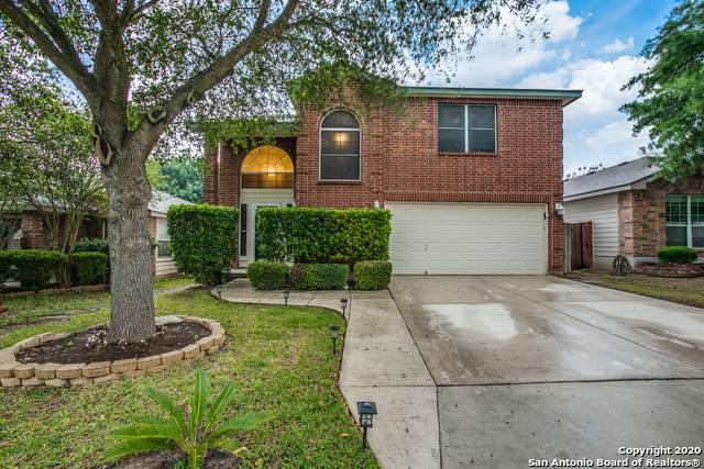 10351 Tiger Paw, San Antonio, TX 78251 (MLS #1449836) :: EXP Realty