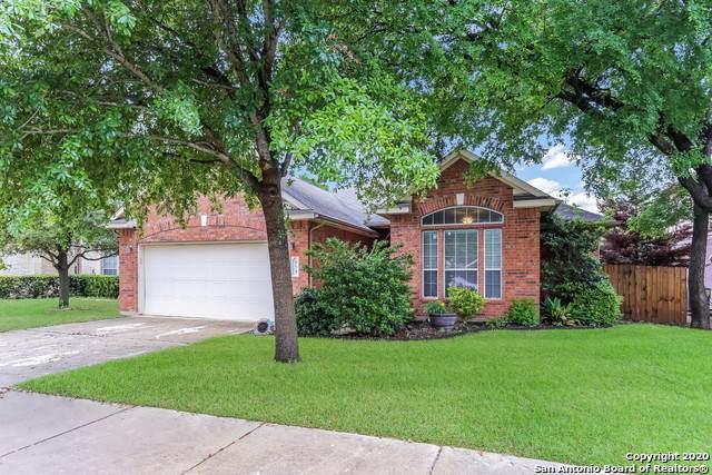 453 Silver Buckle, Schertz, TX 78154 (MLS #1449968) :: Reyes Signature Properties
