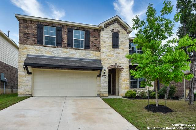 10922 Yaupon Holly, Helotes, TX 78023 (MLS #1450123) :: Tom White Group