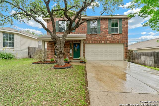 10723 Bearwolf Bay, San Antonio, TX 78245 (MLS #1450145) :: McDougal Realtors