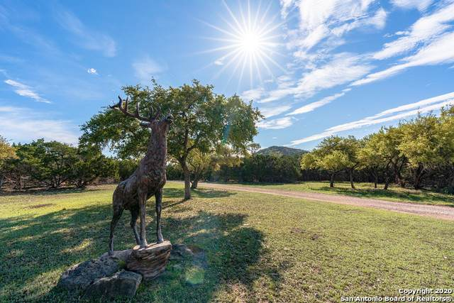 2724 Bump Gate Rd, Pipe Creek, TX 78063 (MLS #1450241) :: Neal & Neal Team