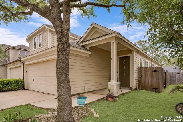 6924 Terra Rye, San Antonio, TX 78230 (MLS #1450565) :: ForSaleSanAntonioHomes.com