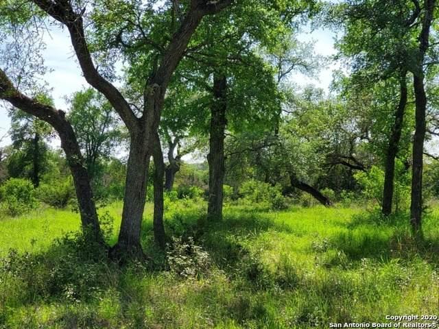 2015 Havenwood Blvd, New Braunfels, TX 78132 (MLS #1450653) :: Carolina Garcia Real Estate Group