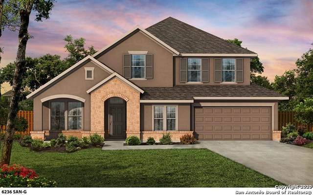 2230 Hoja Avenue, New Braunfels, TX 78132 (MLS #1450705) :: Carolina Garcia Real Estate Group