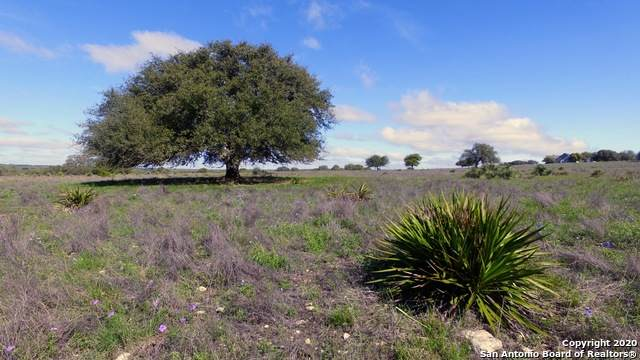 0 Ranch Road 783 - Photo 1