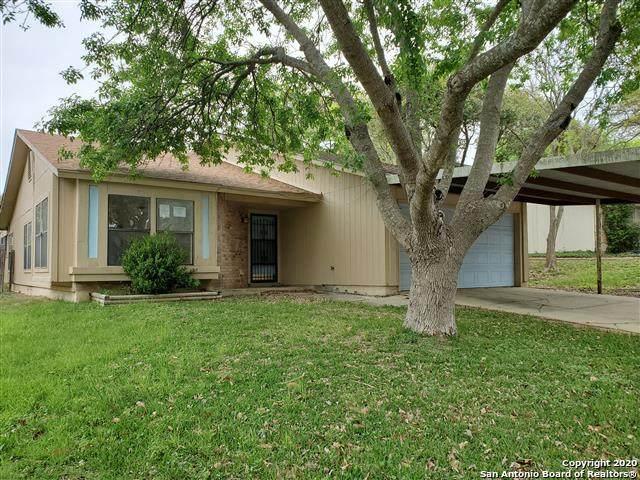 5407 Vista Court Dr, San Antonio, TX 78247 (MLS #1451071) :: Alexis Weigand Real Estate Group