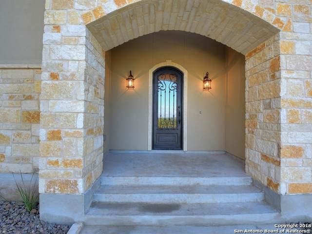 613 Hannahs Run, New Braunfels, TX 78130 (MLS #1451083) :: The Gradiz Group