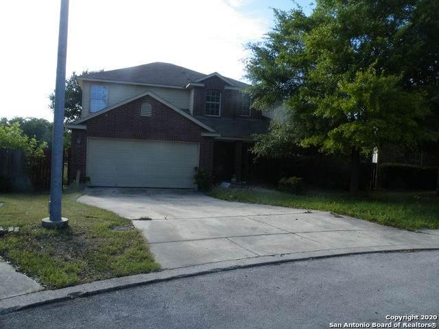 10407 Branch Crest, San Antonio, TX 78245 (MLS #1451495) :: Alexis Weigand Real Estate Group