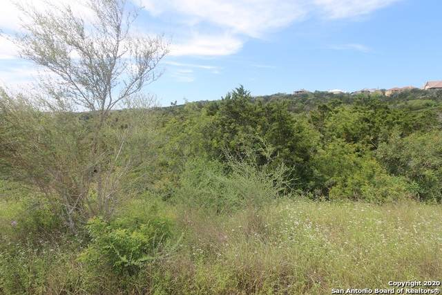 14155 Iron Horse Way, Helotes, TX 78023 (MLS #1452006) :: Williams Realty & Ranches, LLC