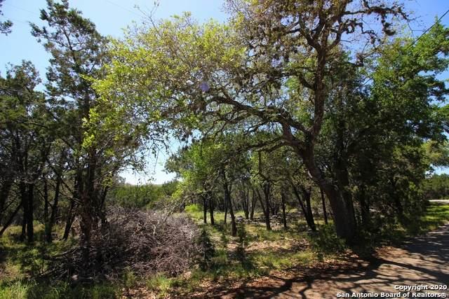 1041 Burning Tree, Spring Branch, TX 78070 (MLS #1452107) :: BHGRE HomeCity San Antonio