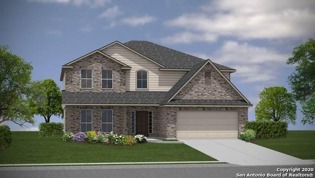 8239 Scarlet Gaura, Boerne, TX 78015 (MLS #1452383) :: Carolina Garcia Real Estate Group