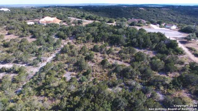 146 Cr 2741, Mico, TX 78056 (MLS #1453131) :: The Glover Homes & Land Group