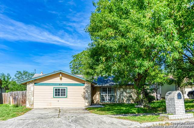 919 Saddlebrook Dr, San Antonio, TX 78245 (MLS #1453309) :: Alexis Weigand Real Estate Group