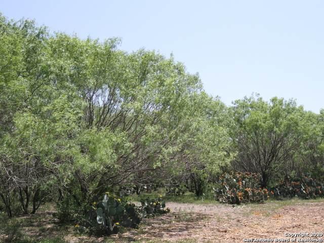 3034 Atascosa County Road 101 Lot 8, Floresville, TX 78114 (MLS #1453504) :: Reyes Signature Properties