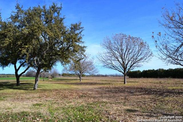 15375 Us Highway 90, Castroville, TX 78009 (MLS #1453738) :: Warren Williams Realty & Ranches, LLC