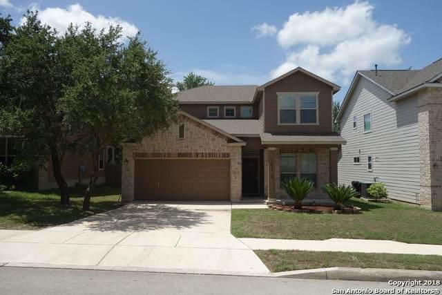 10726 Buck Park, San Antonio, TX 78245 (MLS #1453741) :: The Glover Homes & Land Group
