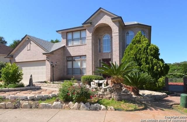 13619 Mesa Point Dr, San Antonio, TX 78232 (MLS #1454329) :: EXP Realty
