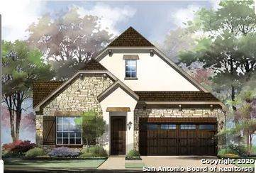 91 Mariposa Pkwy W, Boerne, TX 78006 (#1454489) :: The Perry Henderson Group at Berkshire Hathaway Texas Realty