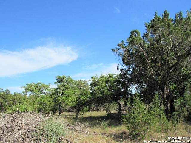TBD Lakewood Dr, Lakehills, TX 78063 (MLS #1454559) :: Carolina Garcia Real Estate Group