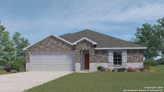 856 Armadillo, Seguin, TX 78155 (#1454876) :: The Perry Henderson Group at Berkshire Hathaway Texas Realty