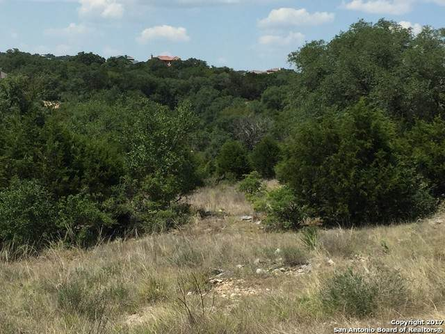 1641 (LOT 647) Decanter Dr, New Braunfels, TX 78132 (MLS #1455133) :: Legend Realty Group