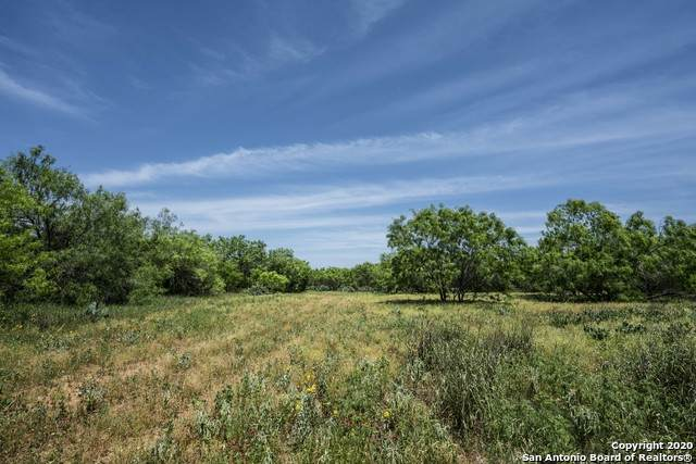 000 Hwy 16, Jourdanton, TX 78026 (MLS #1455478) :: The Gradiz Group