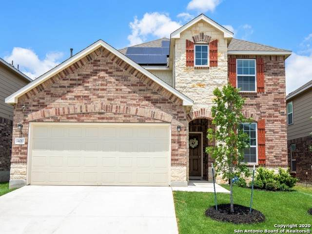 14011 Elounda, San Antonio, TX 78245 (MLS #1456487) :: The Glover Homes & Land Group
