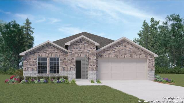 840 Armadillo, Seguin, TX 78155 (#1456598) :: The Perry Henderson Group at Berkshire Hathaway Texas Realty