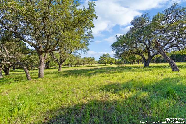 TBD Cr 403, Marble Falls, TX 78654 (MLS #1456958) :: Alexis Weigand Real Estate Group