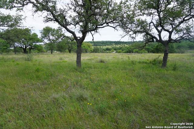 LOT 25 Longhorn Trail, Blanco, TX 78606 (MLS #1457066) :: Tom White Group