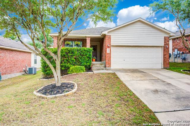 3839 Sumantra Cliffs, San Antonio, TX 78261 (MLS #1457239) :: Exquisite Properties, LLC