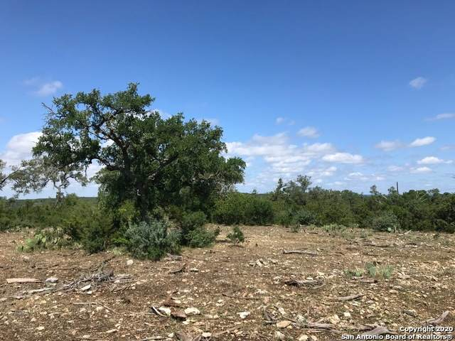 CR 271 And Cr 2615, Mico, TX 78056 (MLS #1457784) :: The Gradiz Group
