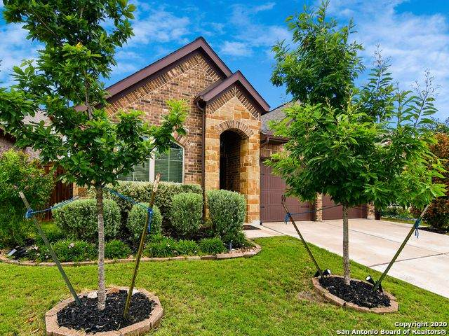 8824 Pinto Cyn, San Antonio, TX 78254 (MLS #1458014) :: The Heyl Group at Keller Williams