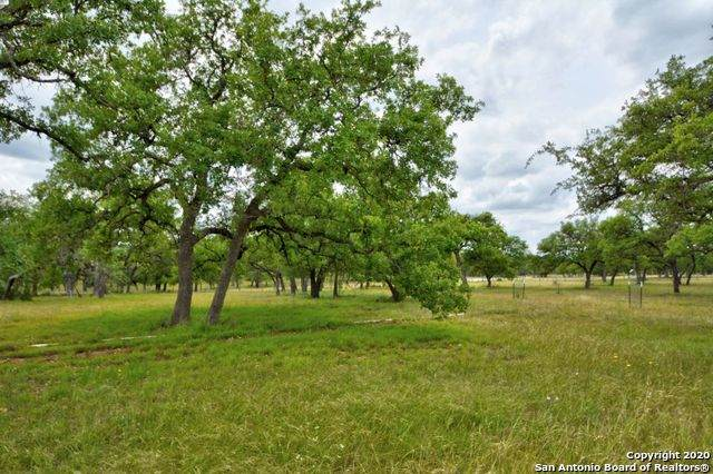 277 Maverick Ln, Fredericksburg, TX 78624 (#1458218) :: The Perry Henderson Group at Berkshire Hathaway Texas Realty