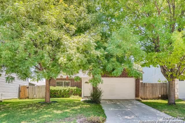 7646 Chatsworth, San Antonio, TX 78250 (MLS #1458419) :: Alexis Weigand Real Estate Group