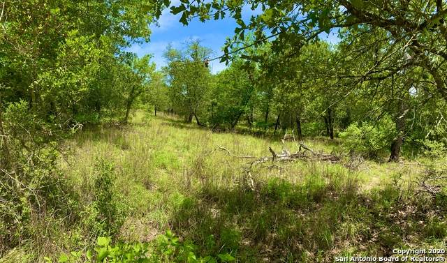 00 (LOT 143) Settlement Way, Luling, TX 78629 (MLS #1458440) :: EXP Realty