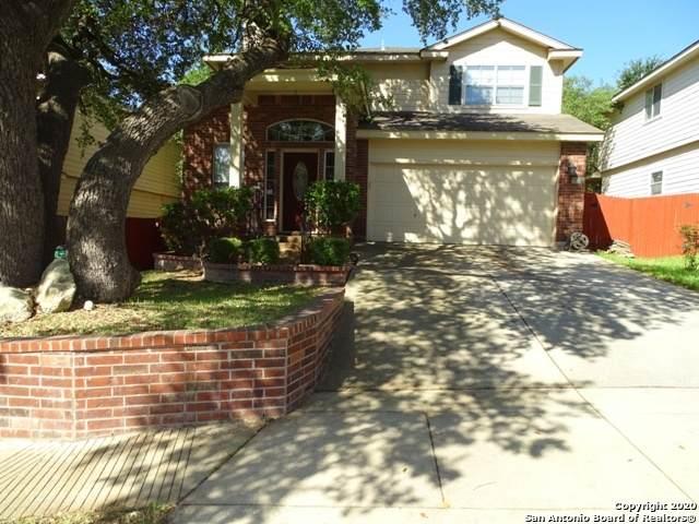 15815 Darlington Gap, San Antonio, TX 78247 (MLS #1458537) :: Alexis Weigand Real Estate Group