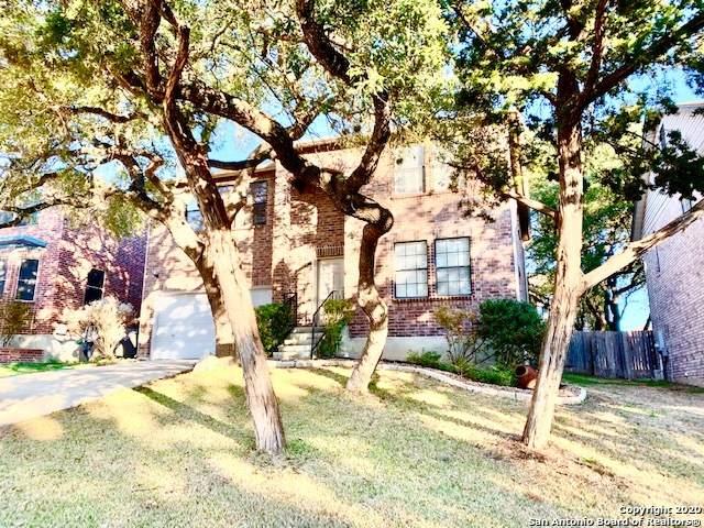 9607 Cedarstone Crk, San Antonio, TX 78254 (MLS #1458781) :: Alexis Weigand Real Estate Group