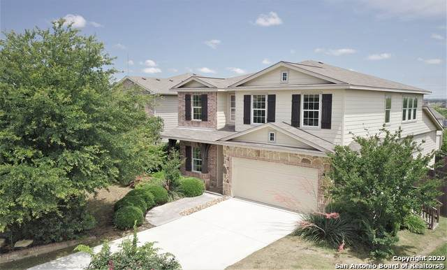 11119 Boot Canyon, San Antonio, TX 78245 (MLS #1458842) :: Carolina Garcia Real Estate Group