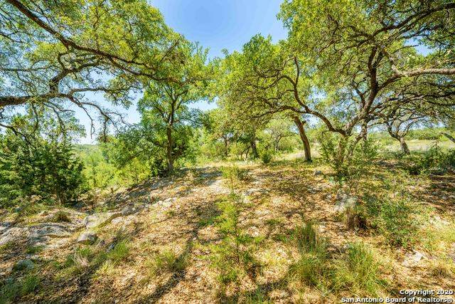 460 Havasu Pt, Spring Branch, TX 78070 (MLS #1458958) :: Williams Realty & Ranches, LLC