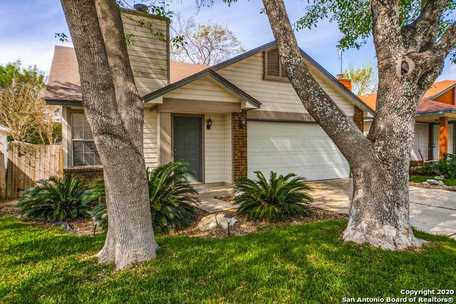 15523 Knollforest, San Antonio, TX 78247 (MLS #1458990) :: Alexis Weigand Real Estate Group