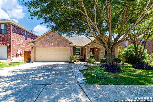 124 Springtree Shadow, Cibolo, TX 78108 (MLS #1459007) :: The Mullen Group | RE/MAX Access