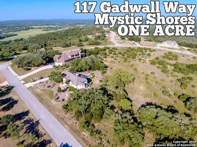 117 Gadwall Way, Spring Branch, TX 78070 (MLS #1459199) :: The Glover Homes & Land Group